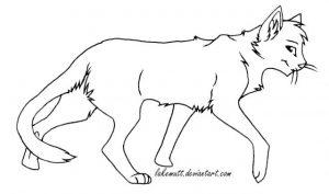 Манекены котов воителей для рисования 015