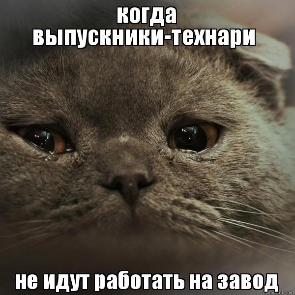 Мемы про работу на заводе   картинки 007