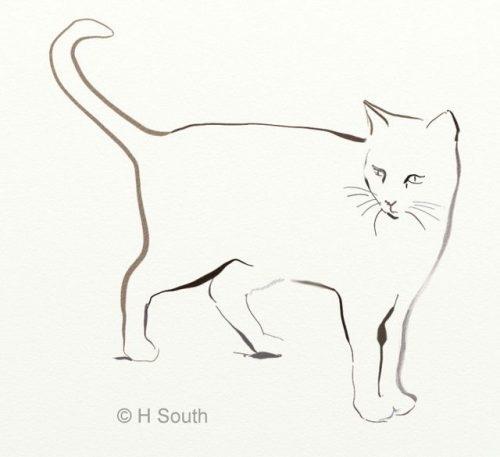 Милые картинки для срисовки котята 027