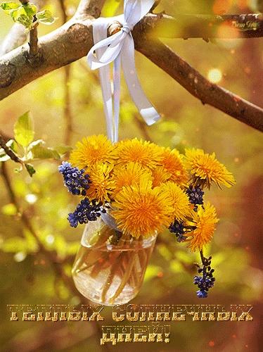 Милые картинки добрый солнечный день 018