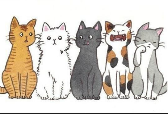 Милые картинки котики для срисовки (14)