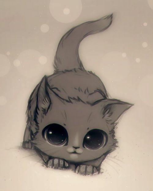 Милые картинки котики для срисовки (16)