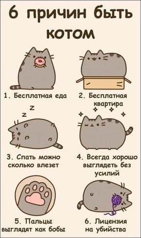 Милые картинки котики для срисовки (19)
