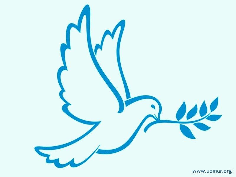 Рисунки голубь мира маленькие предлагаем