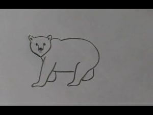 Мишка картинки для детей нарисованные 021