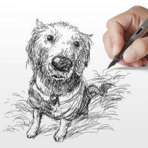Модные картинки нарисованные карандашом 023