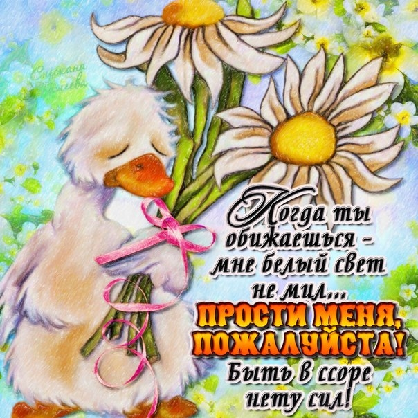 Красивые открытки прости меня любимая моя, любимому мужчине