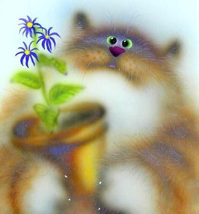 Мой милый котик картинки и открытки 010