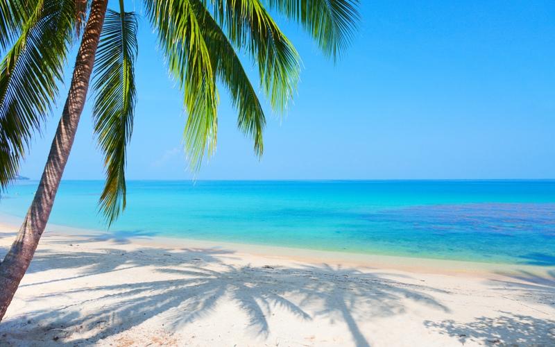 Море пальмы и песок фото и картинки008