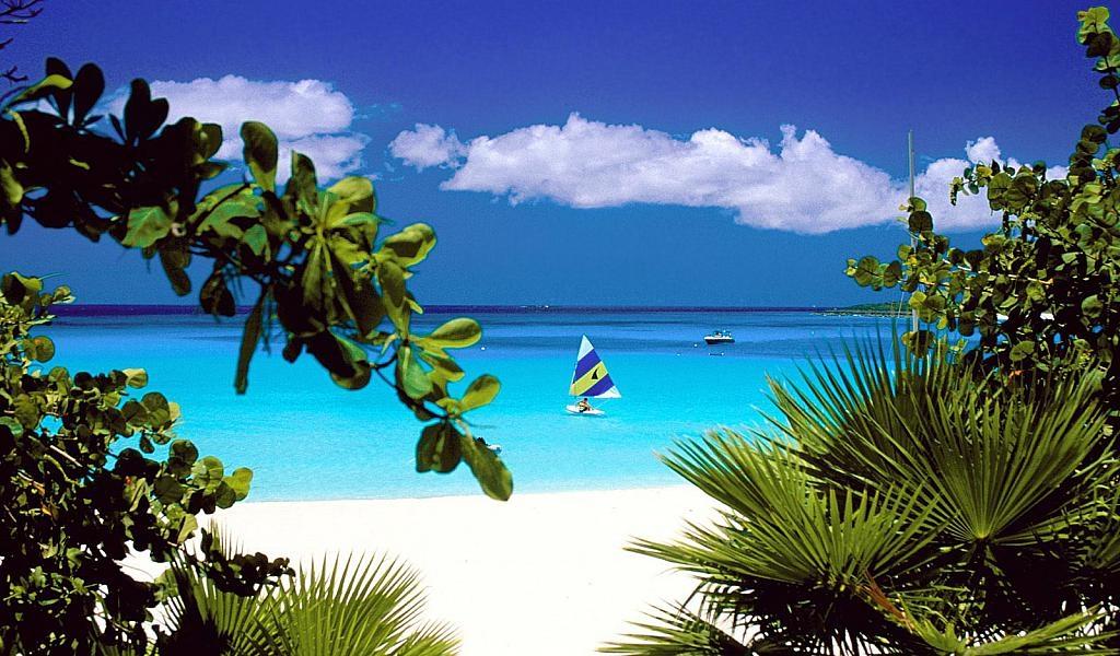 Море пальмы и песок фото и картинки009