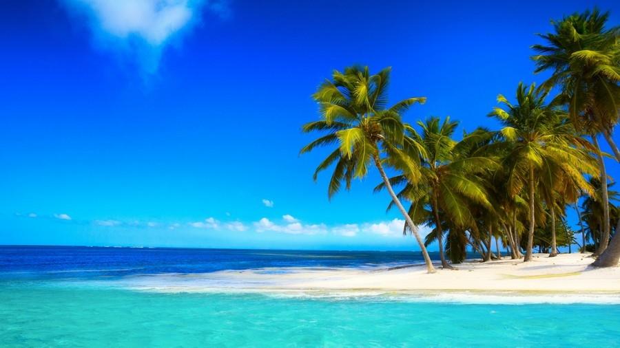 Море пальмы и песок фото и картинки010