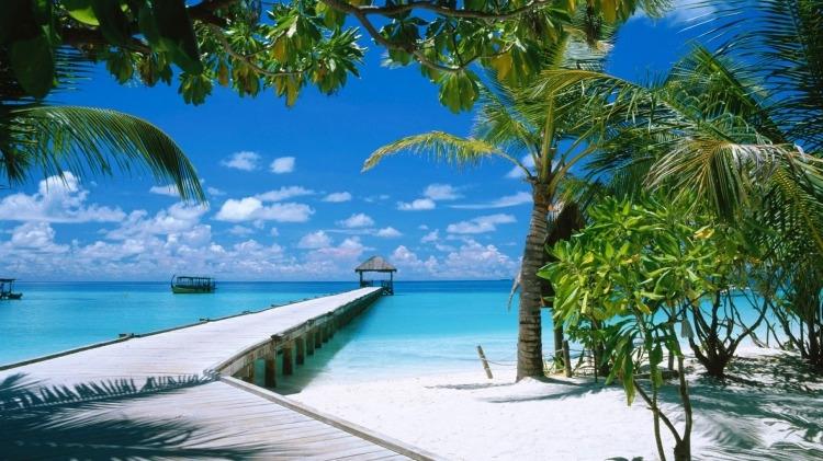 Море пальмы и песок фото и картинки021