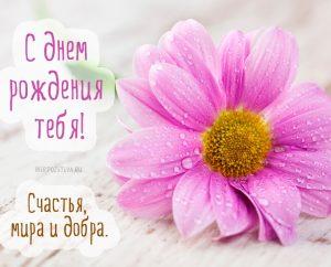 Море цветов с Днем Рождения   открытки 024