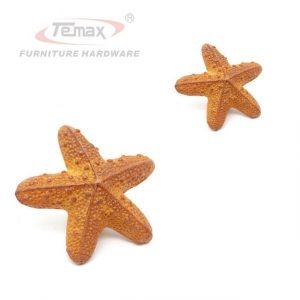 Морские звезды картинки для детей 026