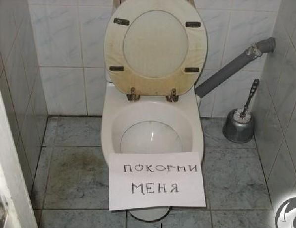Картинка про туалеты с приколами