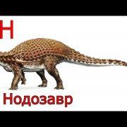 Названия динозавров и фото   подборка 027