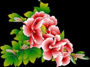 Нарисованные букеты цветов картинки023