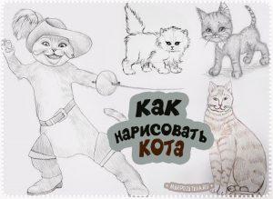 Нарисованные коты картинки карандашом 021