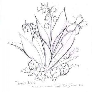 Нарисовать полевые цветы карандашом   картинки 026