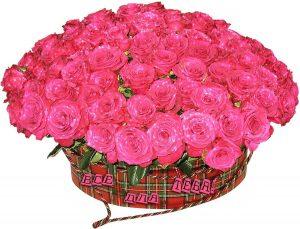 Нежные и красивые цветы   подборка фото 029