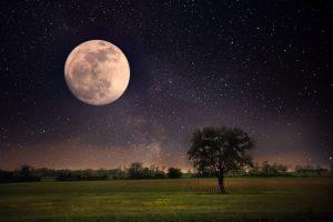 Ночь небо звезды и луна   красивые обои (20)