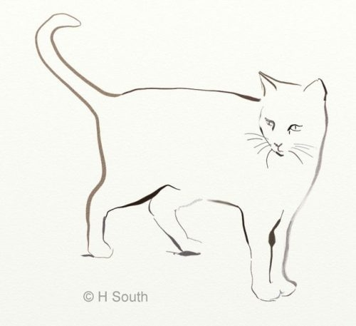 Няшные котики картинки для срисовки 012