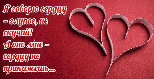 Обожаю тебя любимый картинки и открытки014