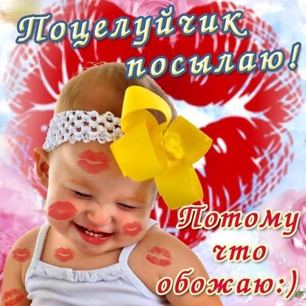 Обожаю тебя любимый картинки и открытки019