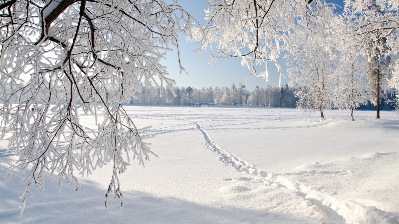 Обои зима на рабочий стол   лучшая подборка (1)