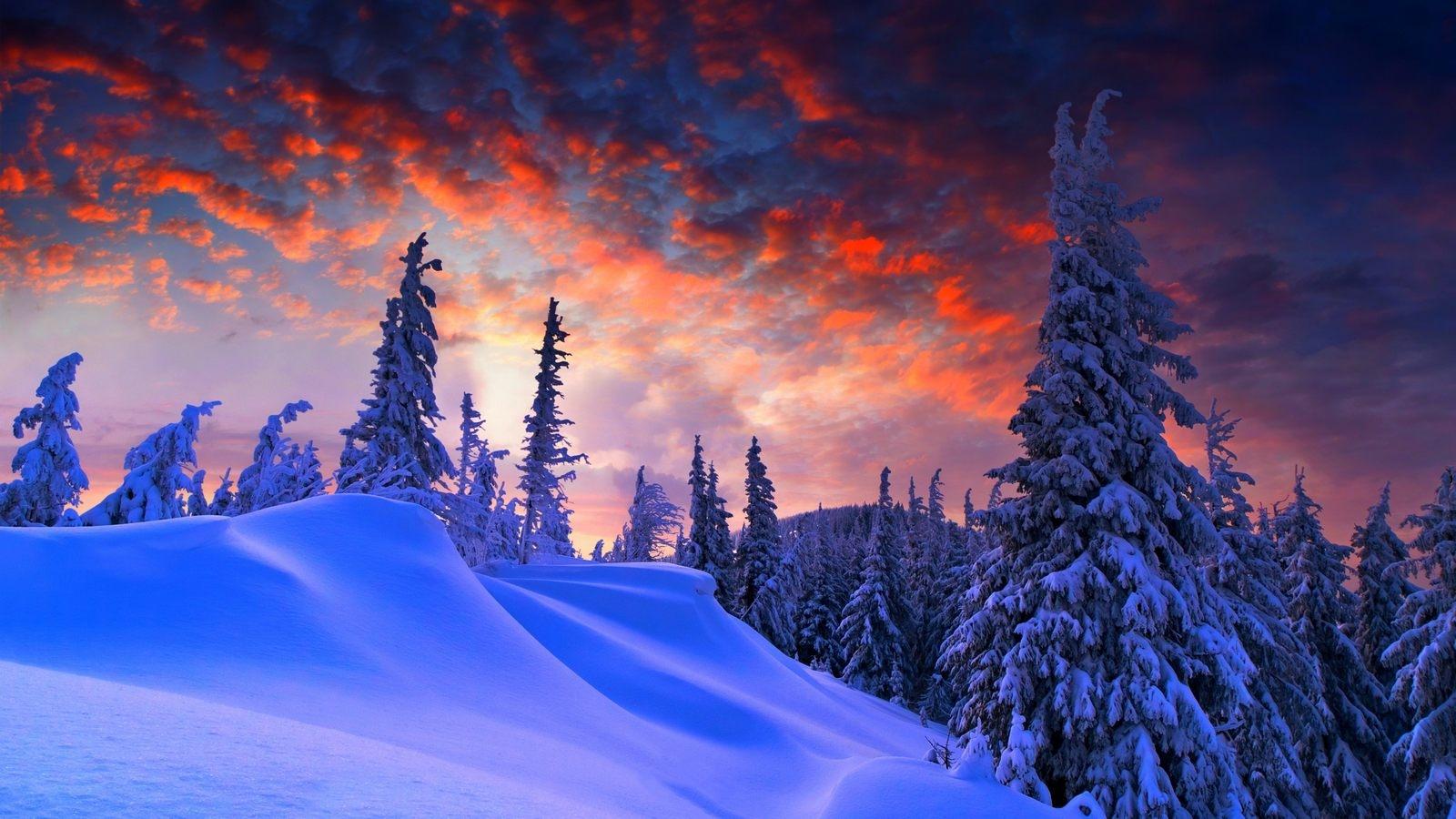 Обои зима на рабочий стол   лучшая подборка (13)