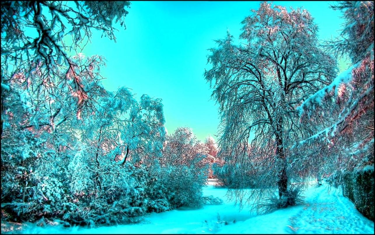 Обои зима на рабочий стол   лучшая подборка (9)