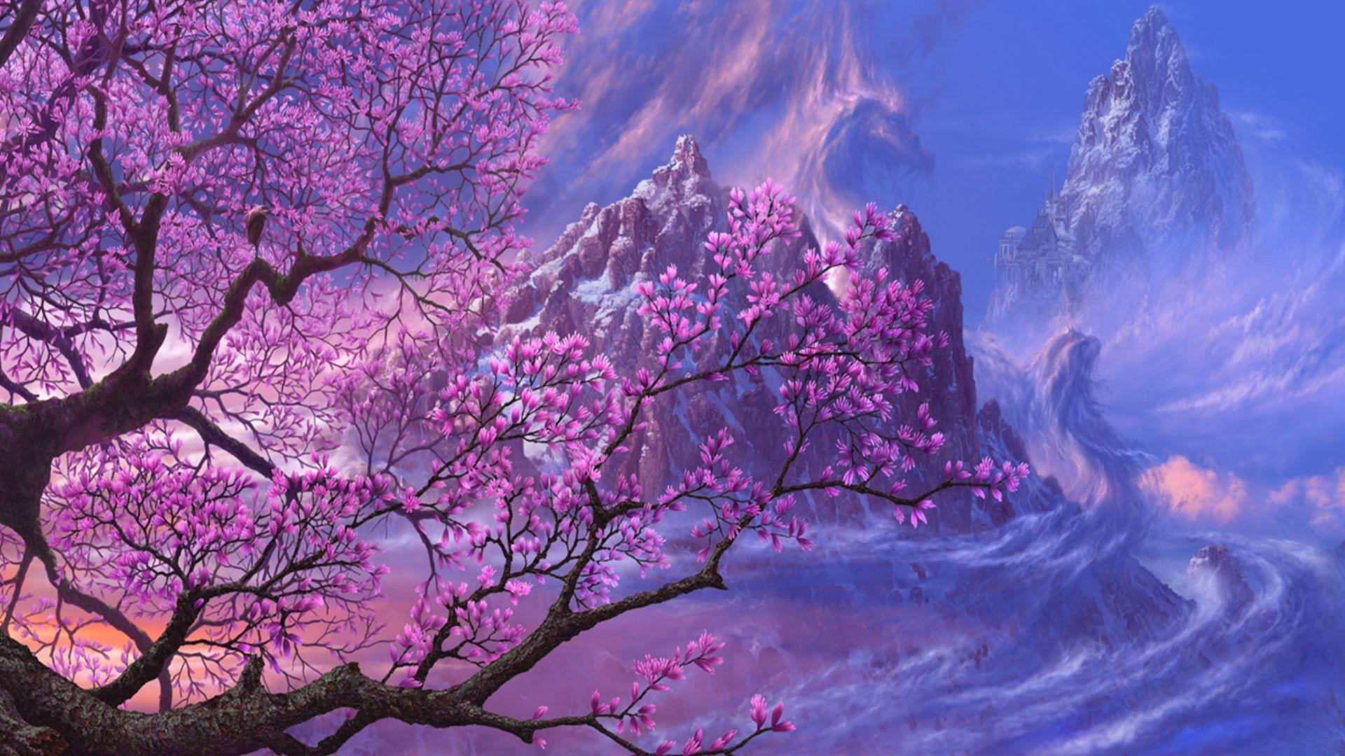 Обои на рабочий стол Сакура в цвету   сборка (7)