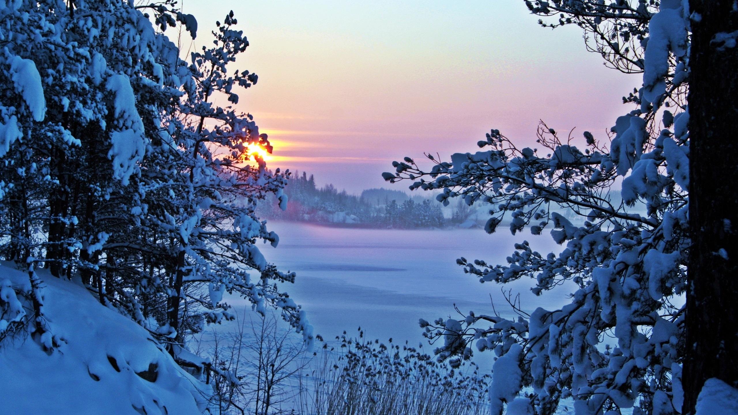 Обои на рабочий стол зима и новый год (1)