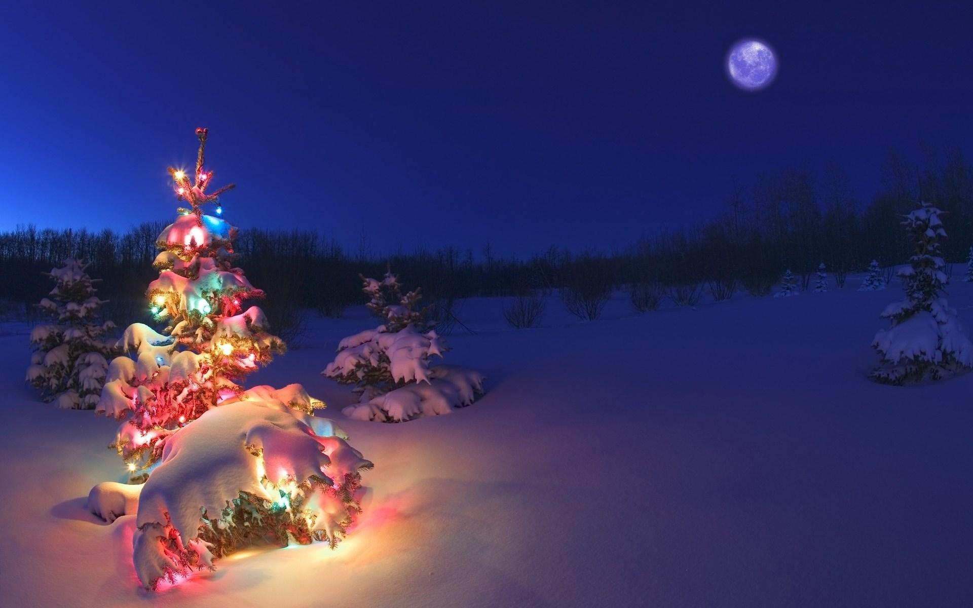 Обои на рабочий стол зима и новый год (19)