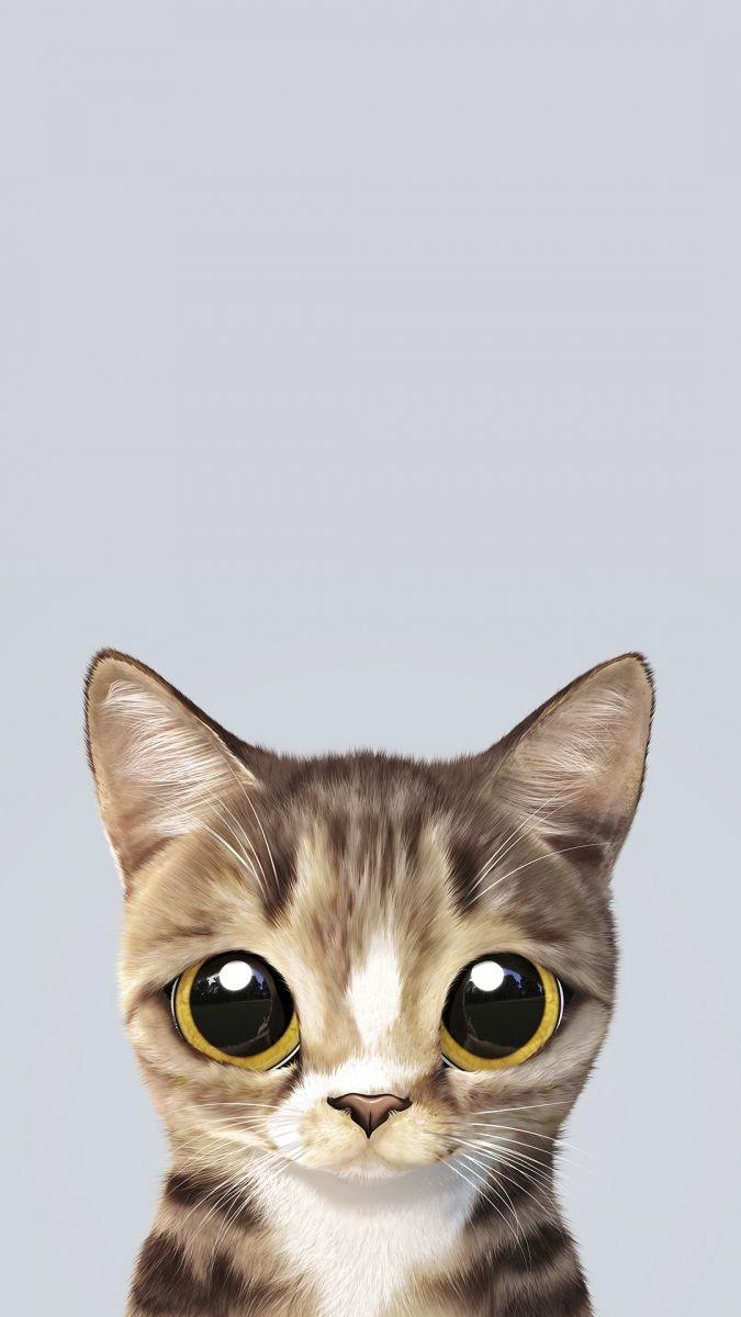 Обои на телефон котята красивые (11)