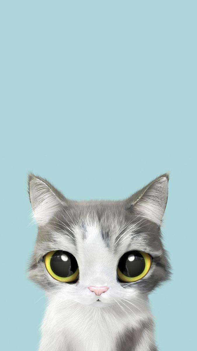 Обои на телефон котята красивые (13)