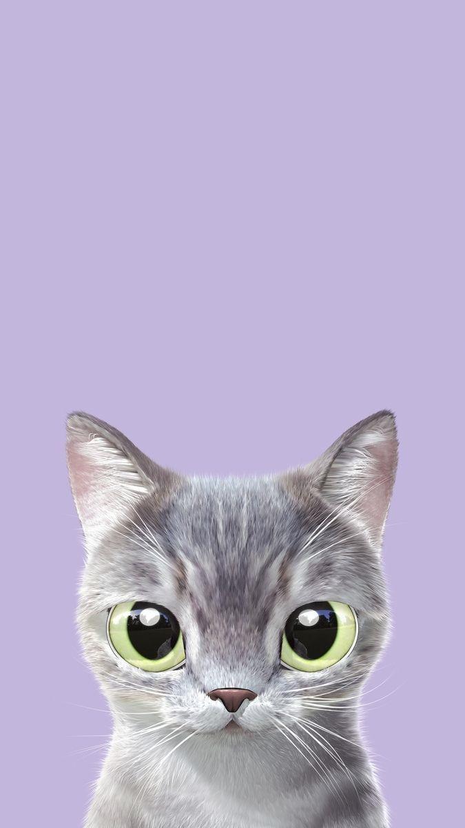 Обои на телефон котята красивые (14)