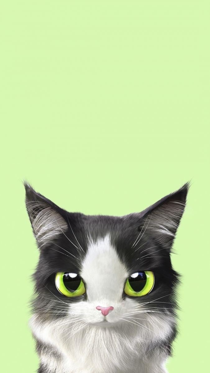 Обои на телефон котята красивые (17)