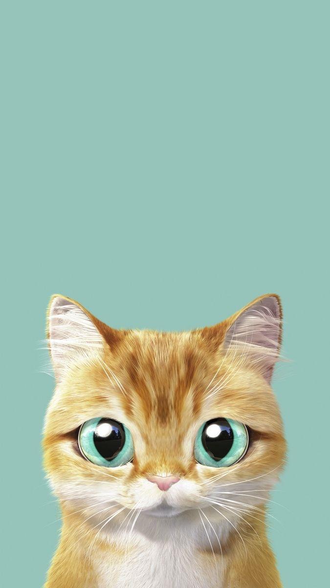 Обои на телефон котята красивые (6)