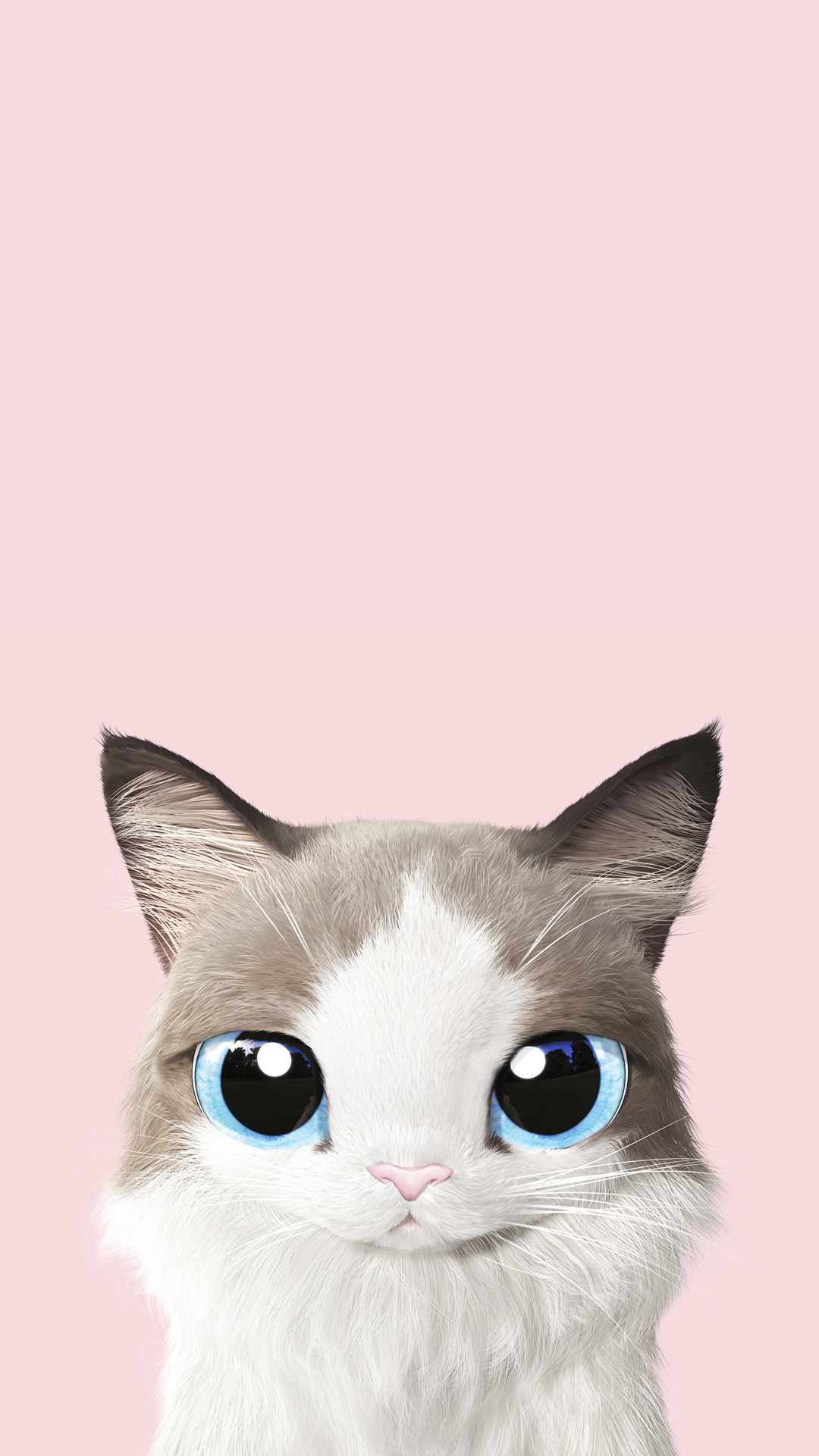 Обои на телефон котята красивые (9)
