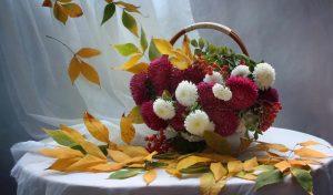 Обои на телефон осенние цветы   подборка (22)