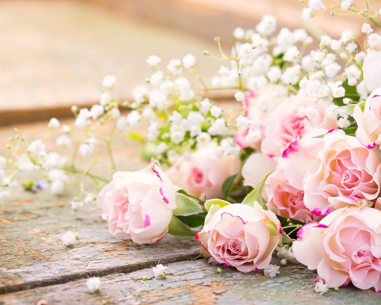 Картинки роз на рабочий стол красивые, картинки люди приколы