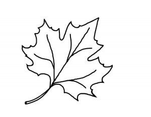 Осенний листочек картинка для детей скачать бесплатно 029