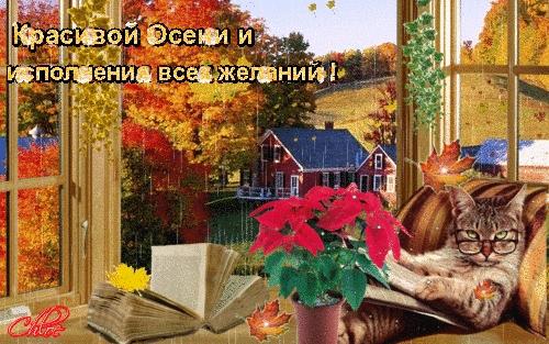 Осенний пейзаж за окном   картинки026