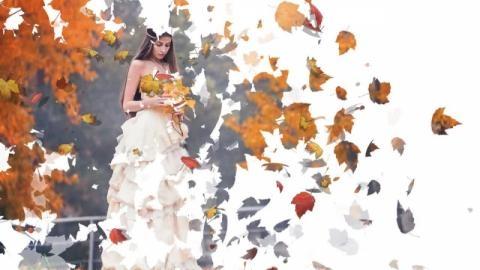 Осень золотая картинки смотреть бесплатно 023