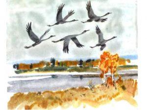 Осень птицы улетают рисунок и картинки025
