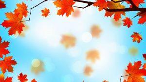 Осень темы на рабочий стол   самые красивые (28)