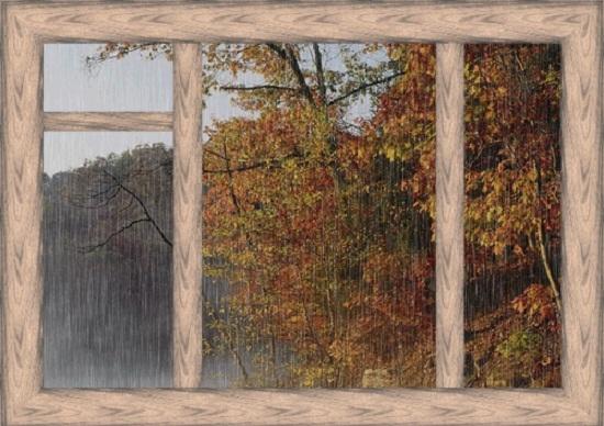 Осень фото из окна   коллекция картинок 019