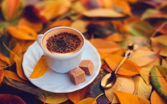 Осень чашка кофе фото   подборка 007