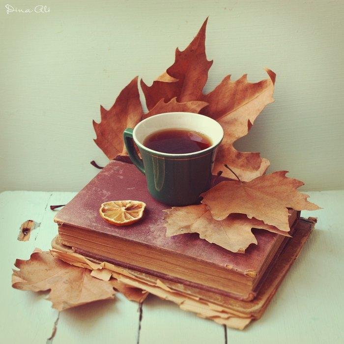 Осень чашка кофе фото   подборка 014